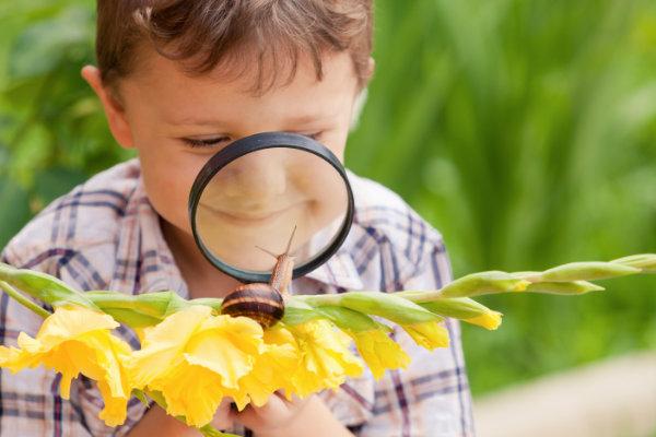 Un enfant curieux étudie un escargot