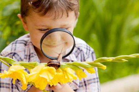 Un garçon curieux étudie un escargot avec une loupe